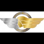 Women Military Aviators Logo